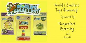 blog-post-worlds-smallest-toy